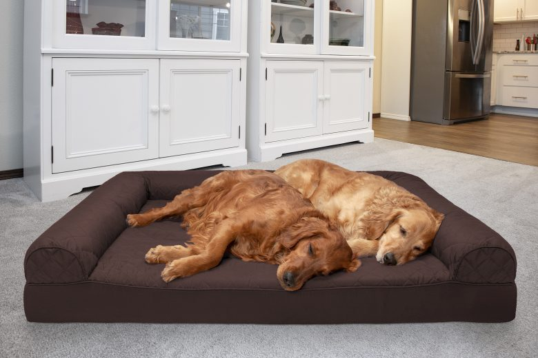 the-friendly-dogs-beds