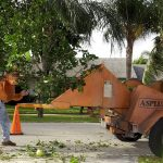 Residential-Tree-Service