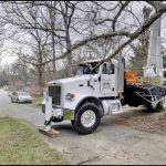 eric's tree service crane accident